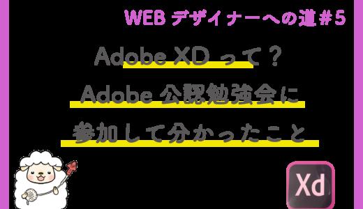 Adobe XDの使い方は?最新情報は?無料でノンデザイナーでも使えるってほんと?
