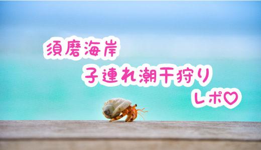 【徹底レポ】須磨海岸の潮干狩り!持ち物は?駐車場は?